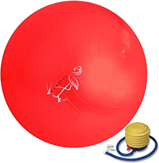 Flamant Exercise Ball 65cm – Anti-Burst Yoga Ball – For ab Workout – Foot Pump Included