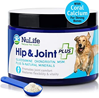 Advanced Glucosamine Powder for Dogs for Arthritis Pain Relief & Hip Dysplasia, Supports Joint Health & Reduces Inflammation with Glucosamine, Chondroitin, MSM & Coral Calcium, 6oz Powder
