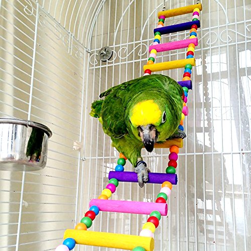 Bird Parrot Toys Ladders Swing Chew…