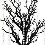 BalsaCircle 30 inch Tall Black Glittered Manzanita Tree with Acrylic Garlands - Wedding Decorations Tabletop Home Decor Centerpieces Party Supplies