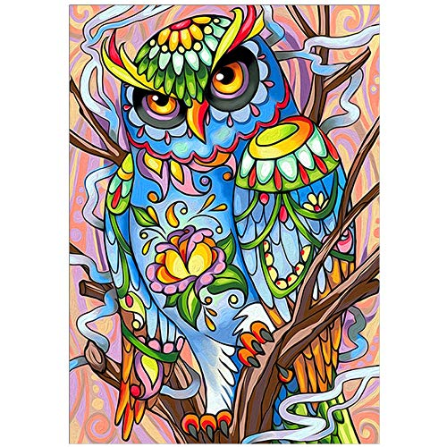 5D Diamond Painting Art owl DIY All Round Diamond Embroidery kit Mosaic Home Decoration Ornaments 30x40cm