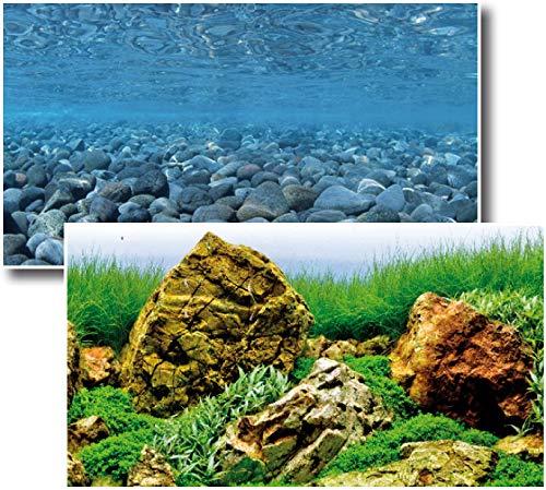 Amtra Deko Fotorückwand Vision beidseitig Bedruckt 120x60cm 2in1 Rückwandposter Rückwand Folie Aquarien Poster Foto Folien