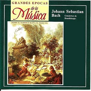 Grandes Epocas de la Música, Johann Sebastian Bach, Conciertos de Brandeburgo , Nº 1 , Nº 2 y Nº 3