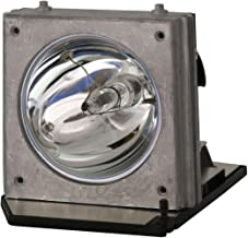 GOLDENRIVER BL-FP200C Replacement Projector Lamp with Housing Compatible with OPTOMA HD32 / HD70 / HD7000