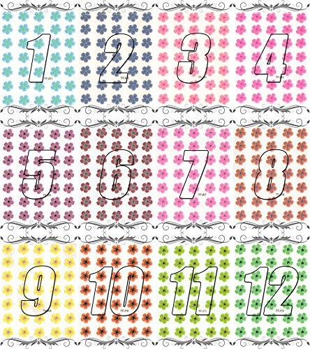 押し花 ネイルシール 花柄 パッケージ入り ((TFP-1)12枚セット )