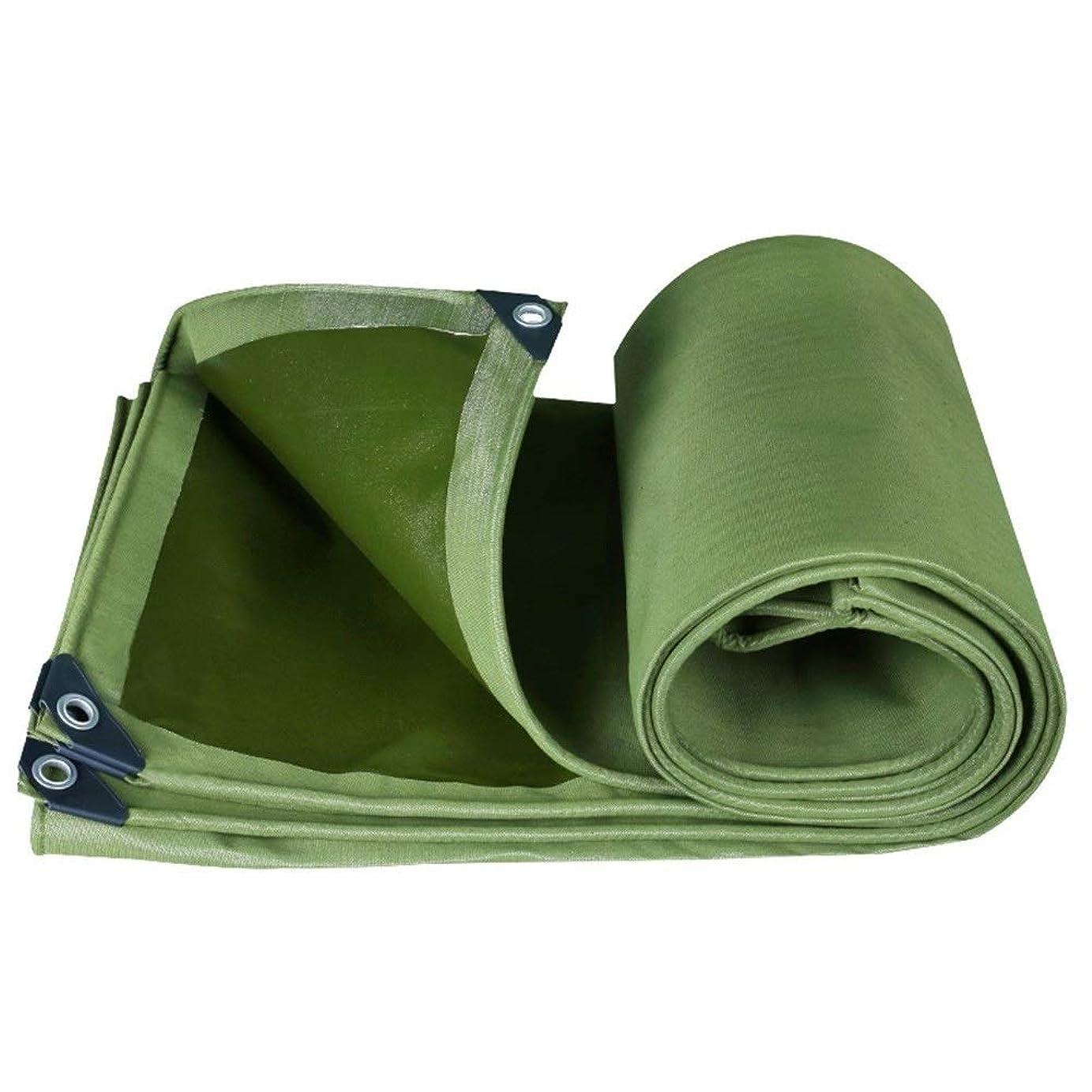 記憶超えて法的FQJYNLY ターポリンタープキャンバス シェーディング率98%防塵屋外の車のカバー、17サイズ (Color : Green, Size : 3x6m)