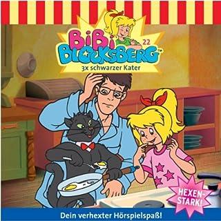 3x schwarzer Kater audiobook cover art