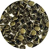 Springfield Leather Company's Antique Brass Medium Double Cap Rivets 100pk