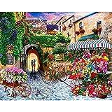 YSNMM Pintura por Números DIY Pintura Digital Flor Bicicleta Flor Calle Sin Marco Dibujo sobre Lienzo