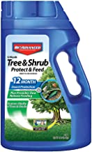 BioAdvanced 701900B 12-Month Shrub Protect & Feed Insect Killer and Tree Food, 4-Pound, Granules