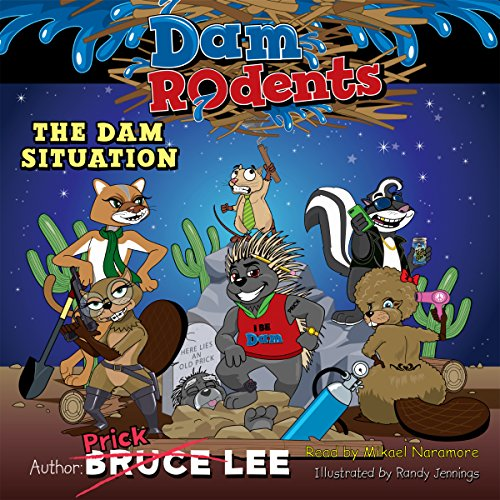 The Dam Situation audiobook cover art