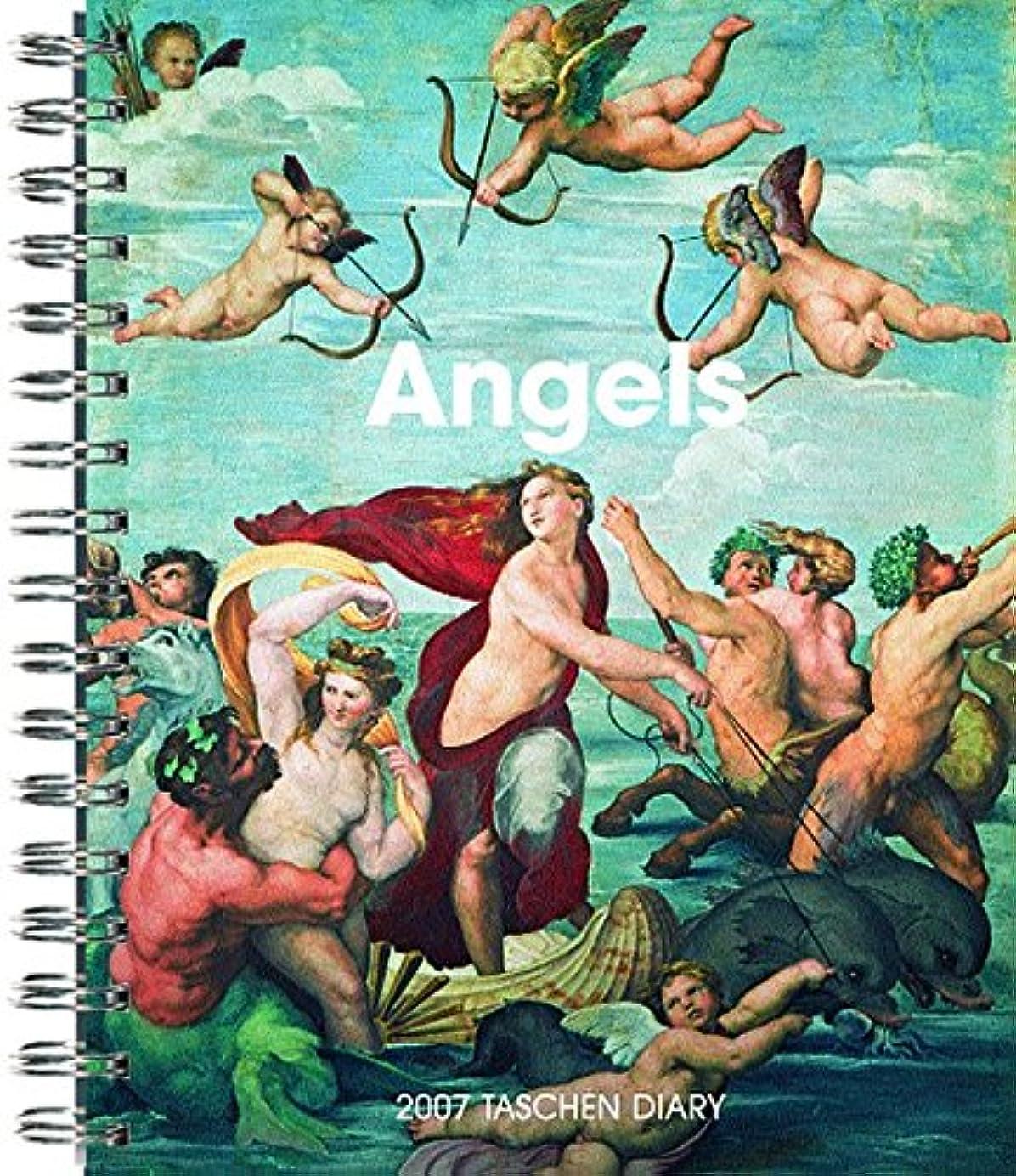 どれでもフリッパー徹底Angels 2007 Calendar (Diaries)