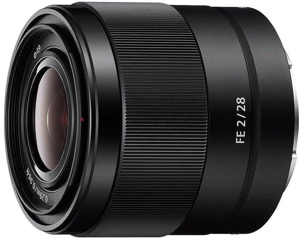 Sony SEL F 2/28 E-Mount Sony Objektiv