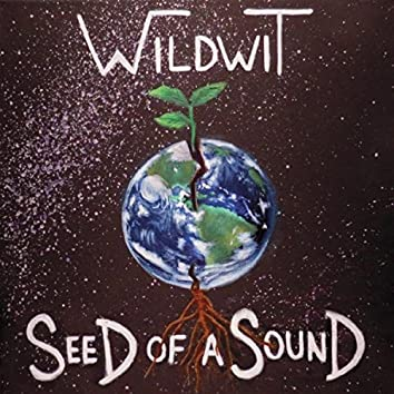 Seed of a Sound