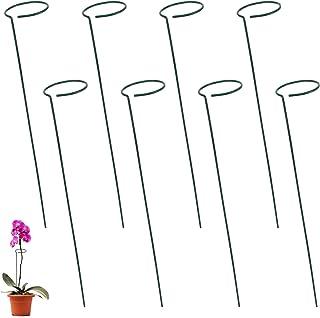 Jubaopen 8 PCS Estaca de Soporte de Planta,Estaca de Apoyo Metal Apoyo a La Estacas de Flores Estaca de Soporte de Una Sol...