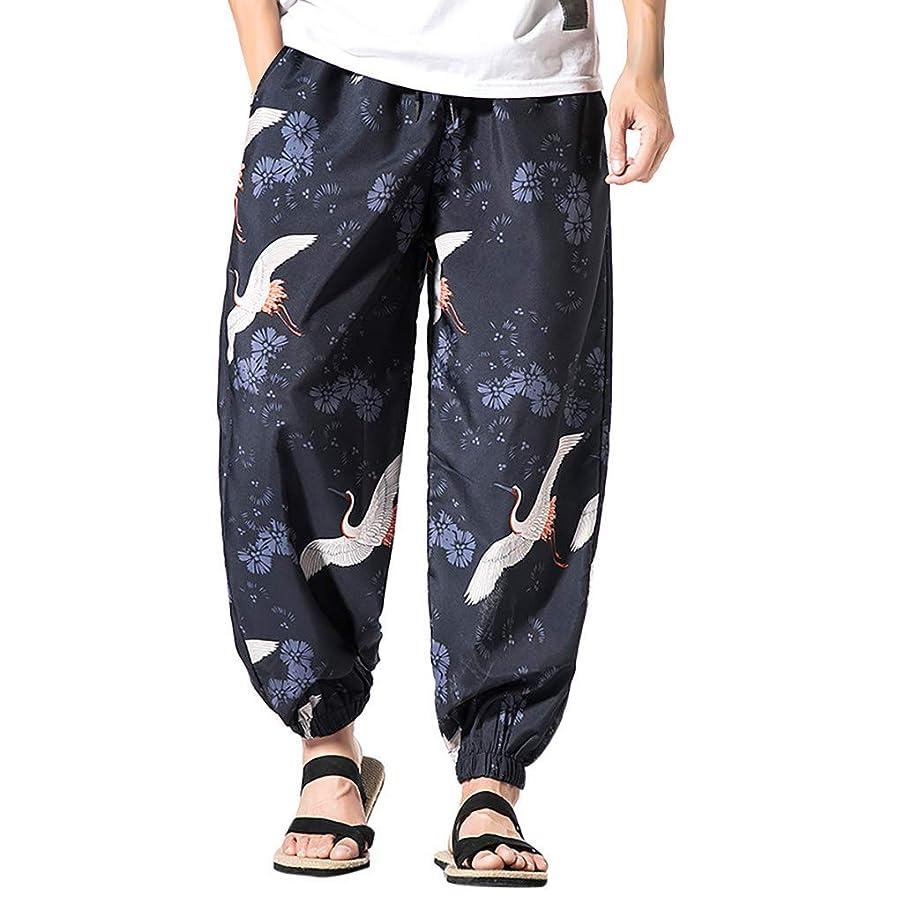 wodceeke Harem Pants for Men, Cotton Pockets Printed Vintage Hip Hop Baggy Wide Leg Pants Streetwear