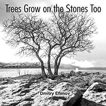 Trees Grow on the Stones Too