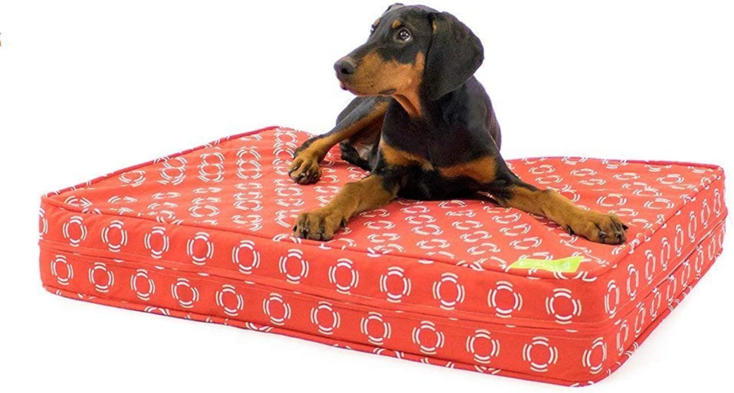 Cardinal & Crest Premium Memory Foam Dog Beds with Removable Cotton Outer Cover and Waterproof Interior   Perfect for Large Dogs   Proudly Made in The USA   Red Flares, Large (36  x 45 )