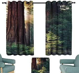 Mannwarehouse National Parks Home Decor Fresh Curtains Morning Sunlight in Wilderness Yosemite Sierra Nevada Nature Art Noise Reducing 72