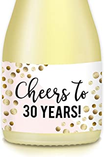 Women's 30th Birthday Ideas Adult Guest Favors, Decoration Mini Wine Bottle Labels, CHEERS to 30 YEARS! Beautiful Pink & Gold Bubbly Decals, Set of 20 Mini Champagne Bottle 3.5
