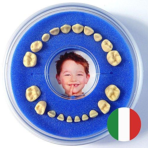 Scatolina per Denti da Latte - Firsty Round - (Blu, Ragazzo) ABF Italiano