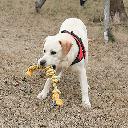 yipet Cotton Rope Chew Toy for Dog Interactive Play 6 Knot Dog Chew Dental Teaser Teeth Cleaning for Medium Large Dog Yellow