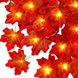 Fall Maple Leaf String 10ft 30 LED Lights Battery Powered with 8 Flicker Modes, Remote and Timer for Fall, Wedding, Christmas, Thanksgiving, Birthday Parties, DIY Home Mantel Decoration