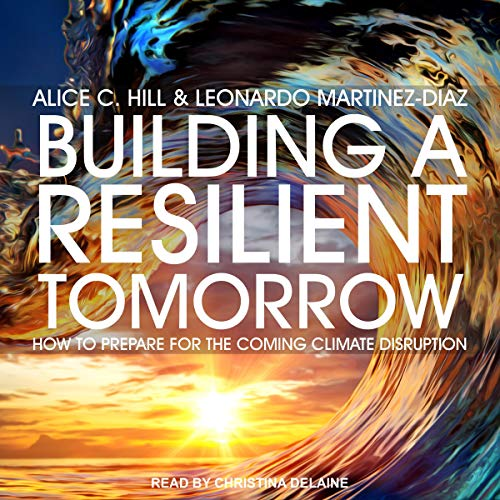 Building a Resilient Tomorrow Audiobook By Alice C. Hill, Leonardo Martinez-Diaz cover art