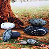 WOWMAX Three-Dimensional Curve Living Stones Floor Pillows Random Combination 7 Piece Set Mixed Designs Home Decoration Stuffed Throw Pillows Big Rock Pillows Pebble Pillows 7 PCS Mixed Styles