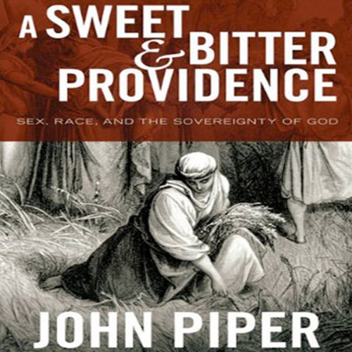 A Sweet & Bitter Providence audiobook cover art