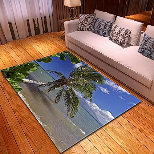 NHhuai Artificial Alfombra para salón Dormitorio baño sofá Silla cojín Dormitorio con Alfombra de Sala de Estar con Vista a la Playa