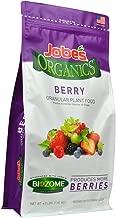 organic fertilizer for raspberry plants