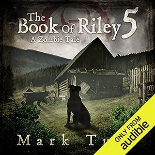 Riley V audiobook cover art