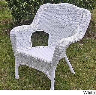 International Caravan Furniture Piece Camelback Resin Wicker Patio Chairs (Set of 2)
