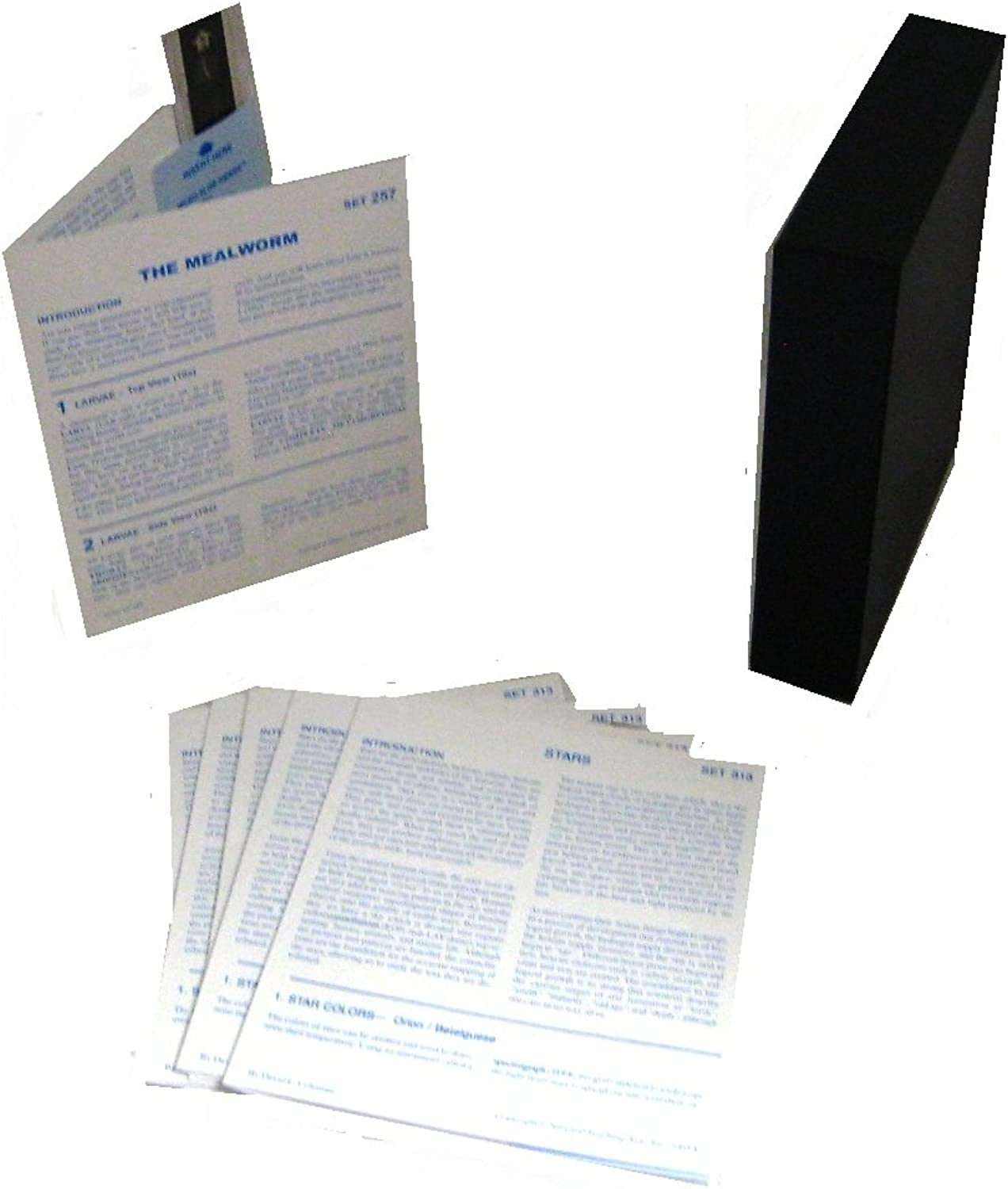 American Educational Microslide Meal Worm Lesson Plan Set (Box of 30)