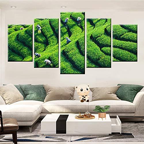 Moderne HD Print Natuurlijke Groene Thee Tuin Landschap Nordic Poster Canvas Mural Woonkamer Slaapkamer Muurdecoratie Frameless 40 * 60 40 * 80 40 * 100