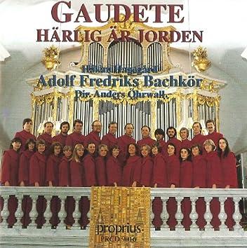 Gaudete - Härlig är Jorden