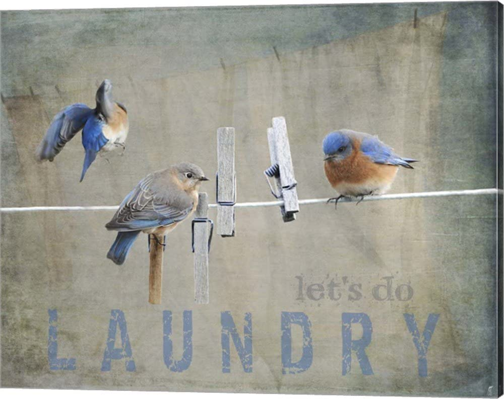 Laundry Day Bluebirds by Jai Johnson Picture Ga Art Canvas Ranking integrated 1st place Wall Max 73% OFF