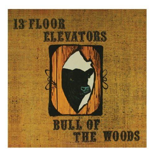 The 13th Floor Elevators