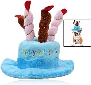 Xrten Sombrero de cumpleaños para Mascotas Perros para Fiesta de cumpleaños Halloween ect, Azul