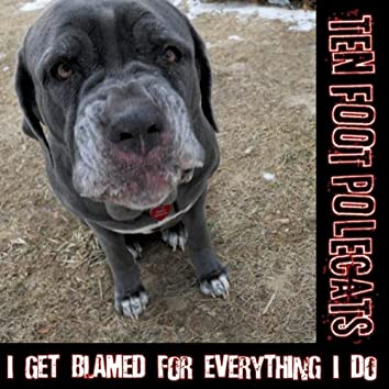 I Get Blamed For Everything I Do