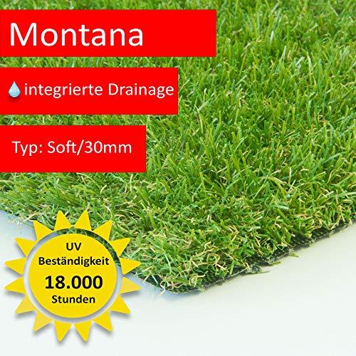 Steffensmeier Kunstrasen Montana | bis 4 m Breite!!! | Ideal zum Selbstverlegen auf Balkon, Terrasse und im Garten, Größe: 200x150 cm