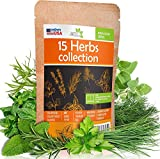 15 Culinary Herb Seeds Pack - Heirloom and Non GMO, Grown in USA -...