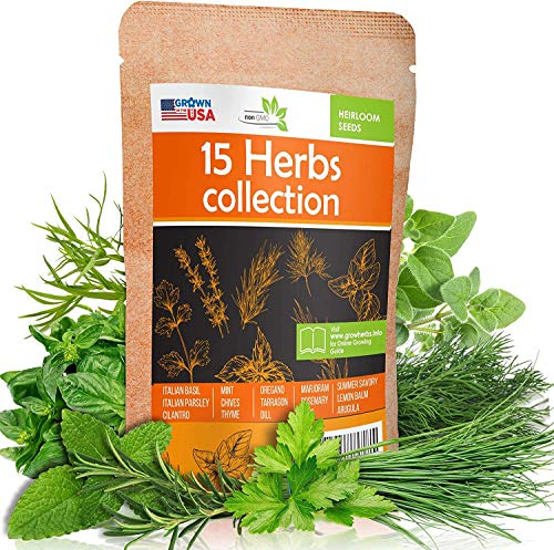 15 Culinary Herb Seeds Pack - Heirloom and Non GMO, Grown in USA - Indoor or...