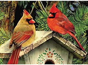 WEIYP 5D Diamond Painting Kits for Adults Full Drill The Cardinals Embroidery Rhinestone Painting Full Drill Paint with Diamond for Home Wall Deco-Cardinals