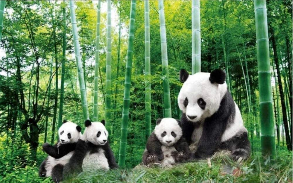 Award Bamboo SALENEW very popular Panda Photo Wallpaper Living Bedroom Room Corridor Office