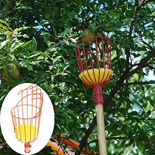 Qmcmc en Plein Air en Aluminium Panier Profond Outils de Jardin Tête de Cueilleur de Fruits Métal Fruits Cueillette Outils Fruits Catcher Récolte Récolte