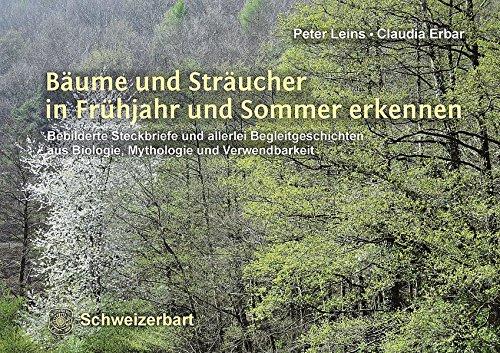 Bäume und Sträucher in Frühjahr und Sommer erkennen: Bebilderte Steckbriefe und allerlei Begleitgeschichten aus Biologie, Mythologie und Verwendbarkeit