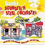 Banks Soundtech Steel Orchestra