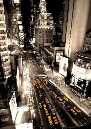 Plastifié et encapsulé géant New York City vue aérienne a massive Vertical POSTER Dimensions 55 \